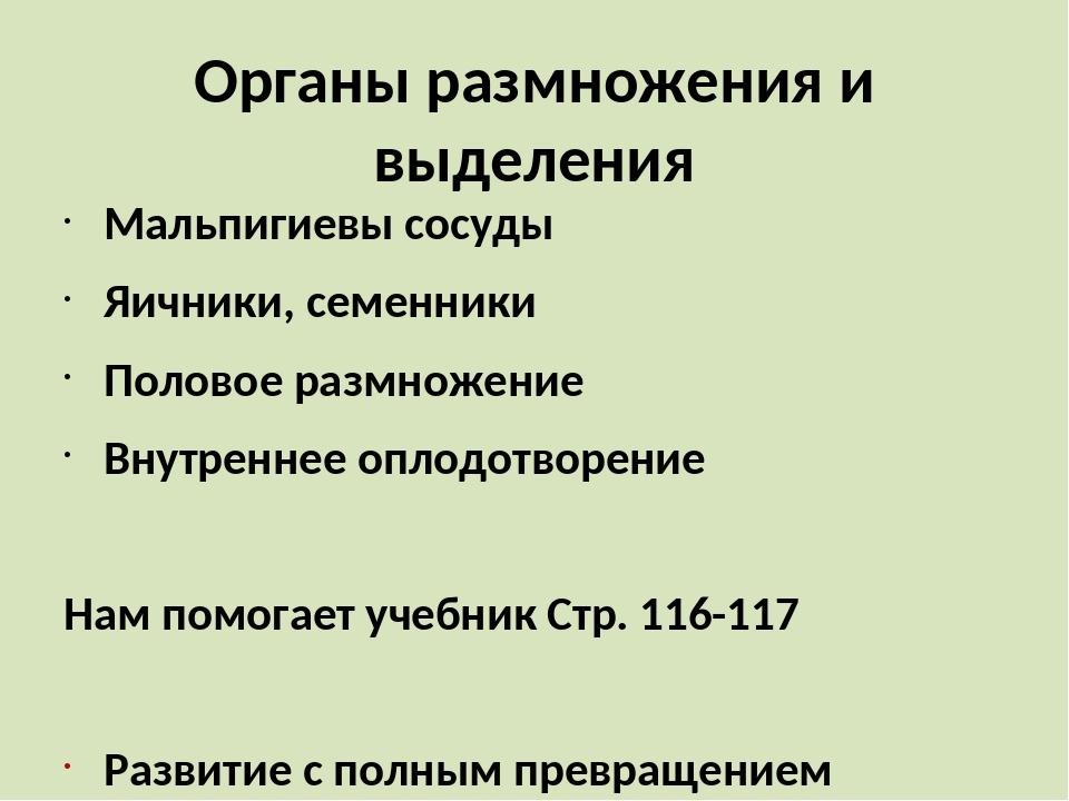 Органы размножения и выделения Мальпигиевы сосуды Яичники, семенники Половое...