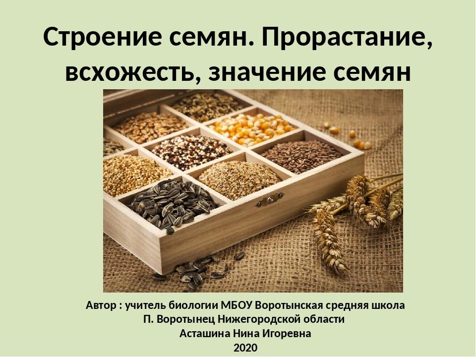 Строение семян. Прорастание, всхожесть, значение семян Автор : учитель биолог...