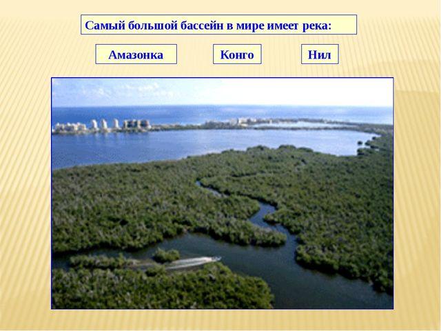 Самый большой бассейн в мире имеет река: Амазонка Конго Нил