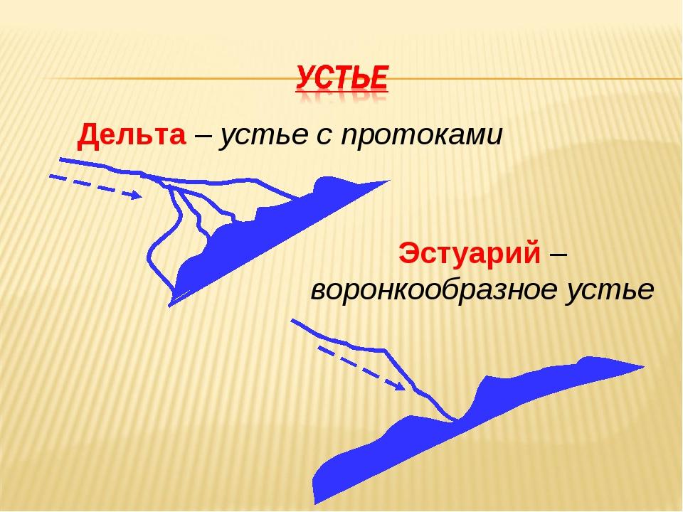 Дельта – устье с протоками Эстуарий – воронкообразное устье