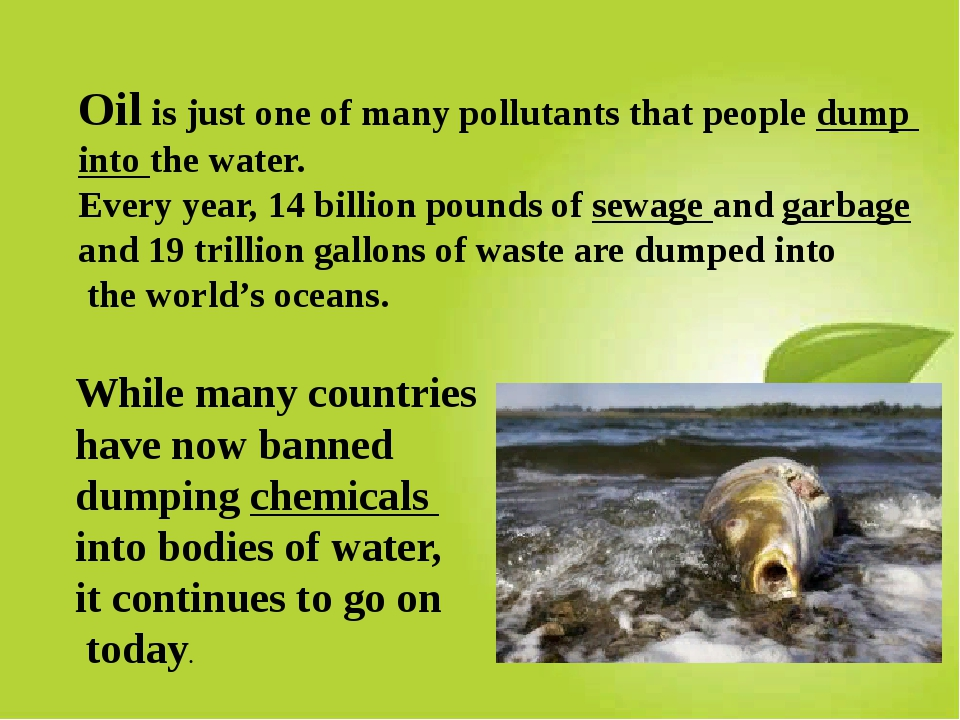 Oil is just one of many pollutants that people dump into the water. Every yea...