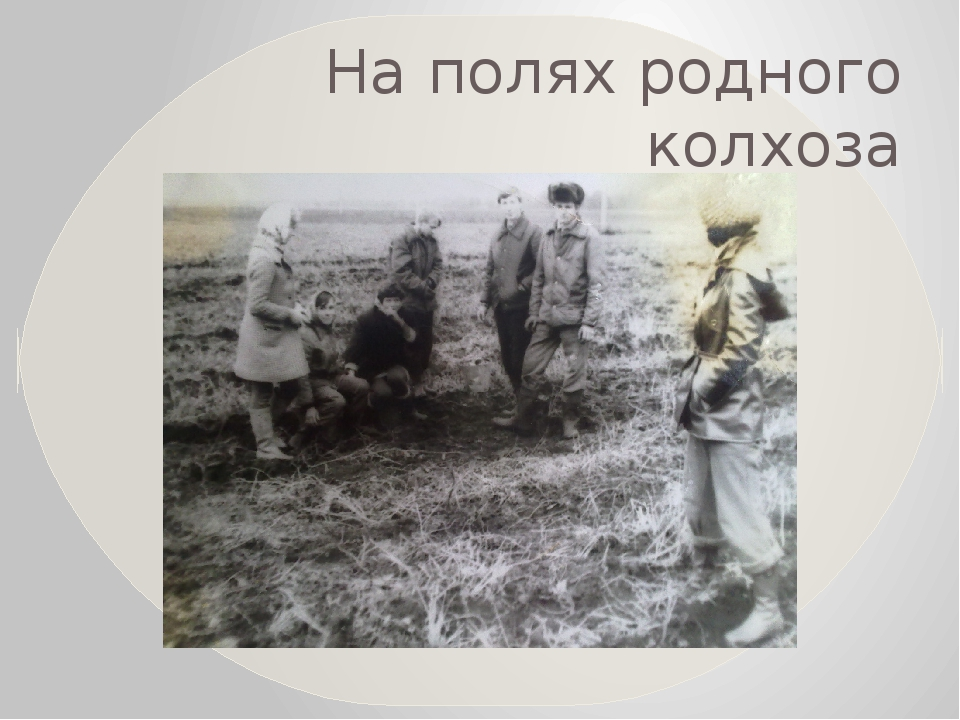 На полях родного колхоза