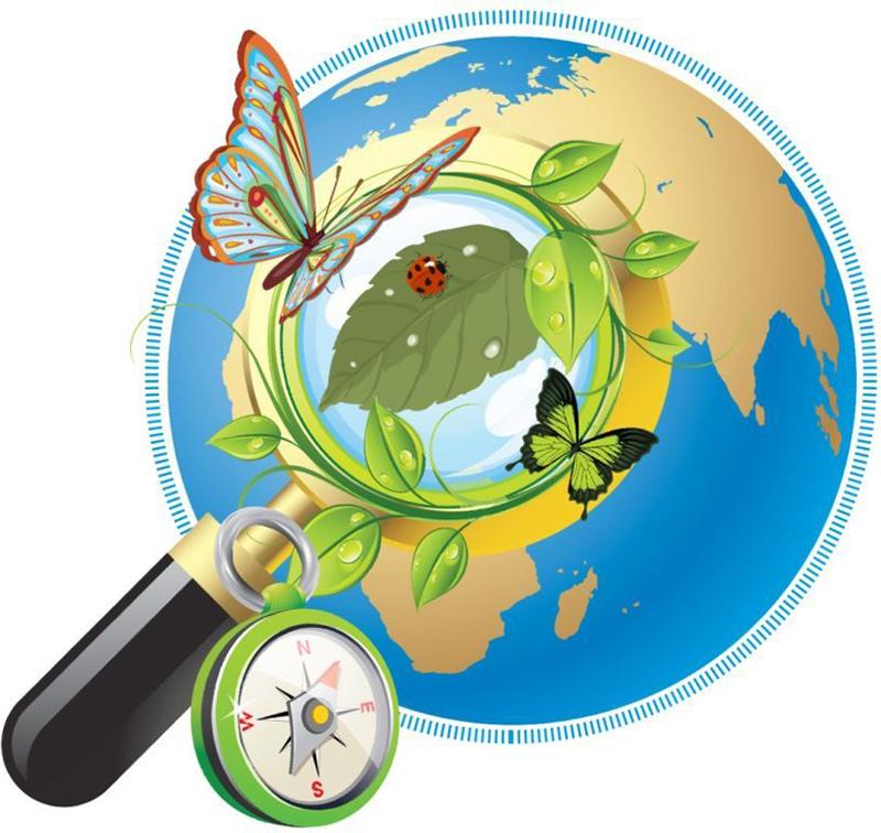 Картинки для презентаций по природоведению