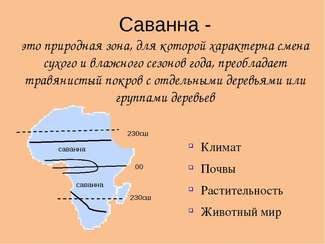 взять займ наличными в москве по паспорту