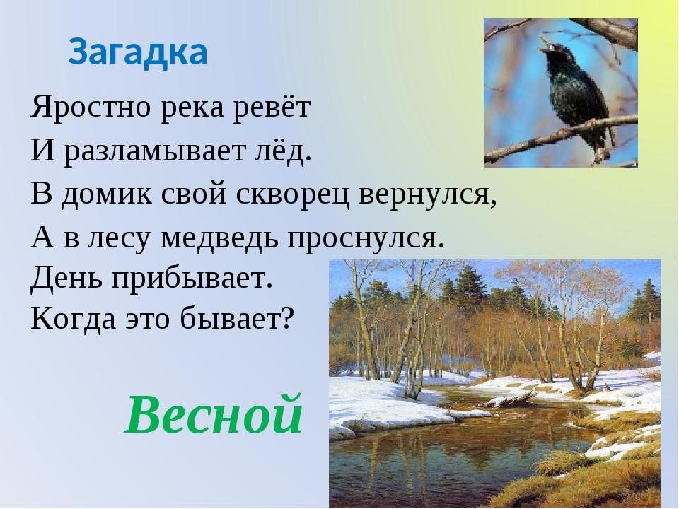 Загадка Яростно река ревёт И разламывает лёд. В домик свой скворец вернулся,...