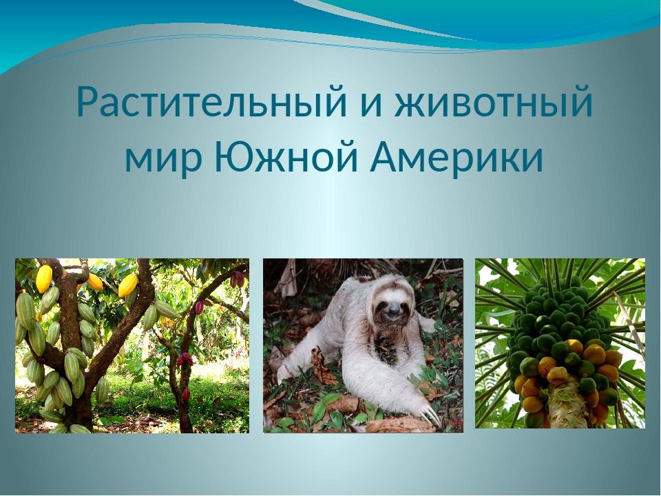 Растительный и животный мир Южной Америки