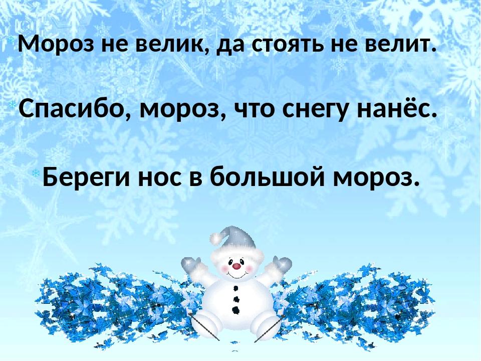 Мороз не велик, да стоять не велит. Спасибо, мороз, что снегу нанёс. Береги н...