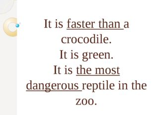 It is faster than a crocodile. It is green. It is the most dangerous reptile