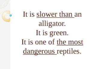 It is slower than an alligator. It is green. It is one of the most dangerous