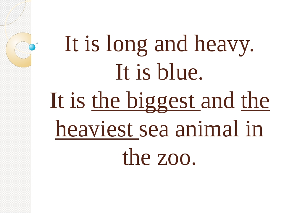 It is long and heavy. It is blue. It is the biggest and the heaviest sea ani...