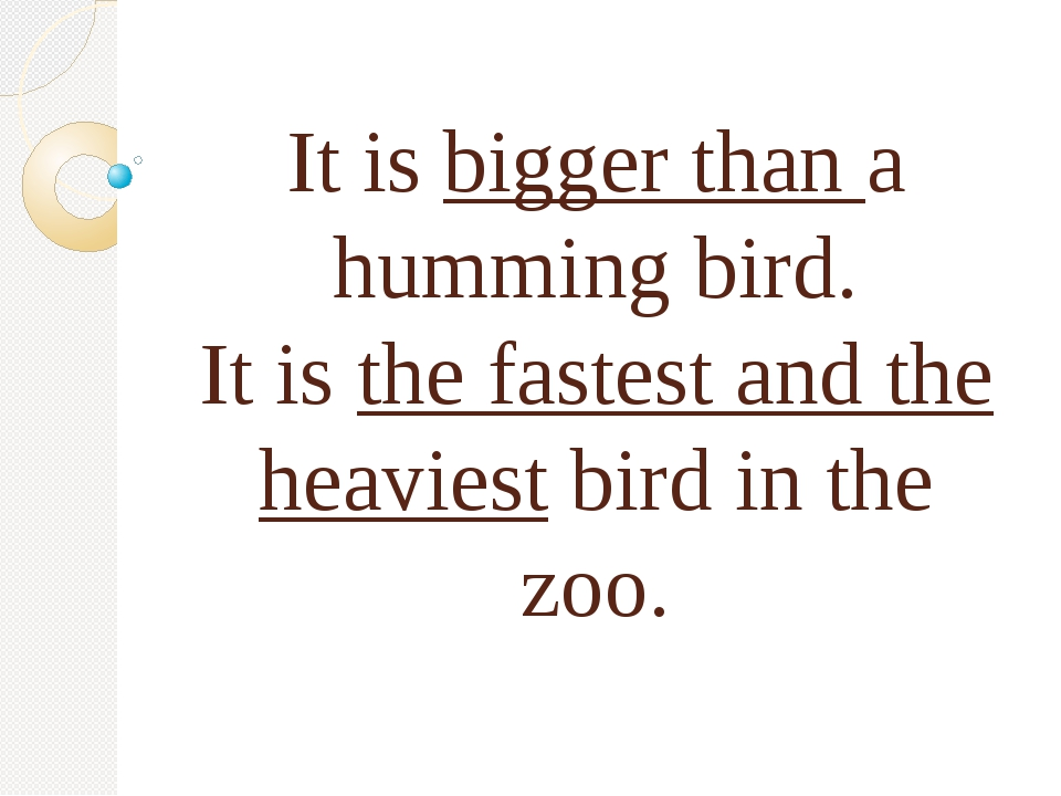 It is bigger than a humming bird. It is the fastest and the heaviest bird in...