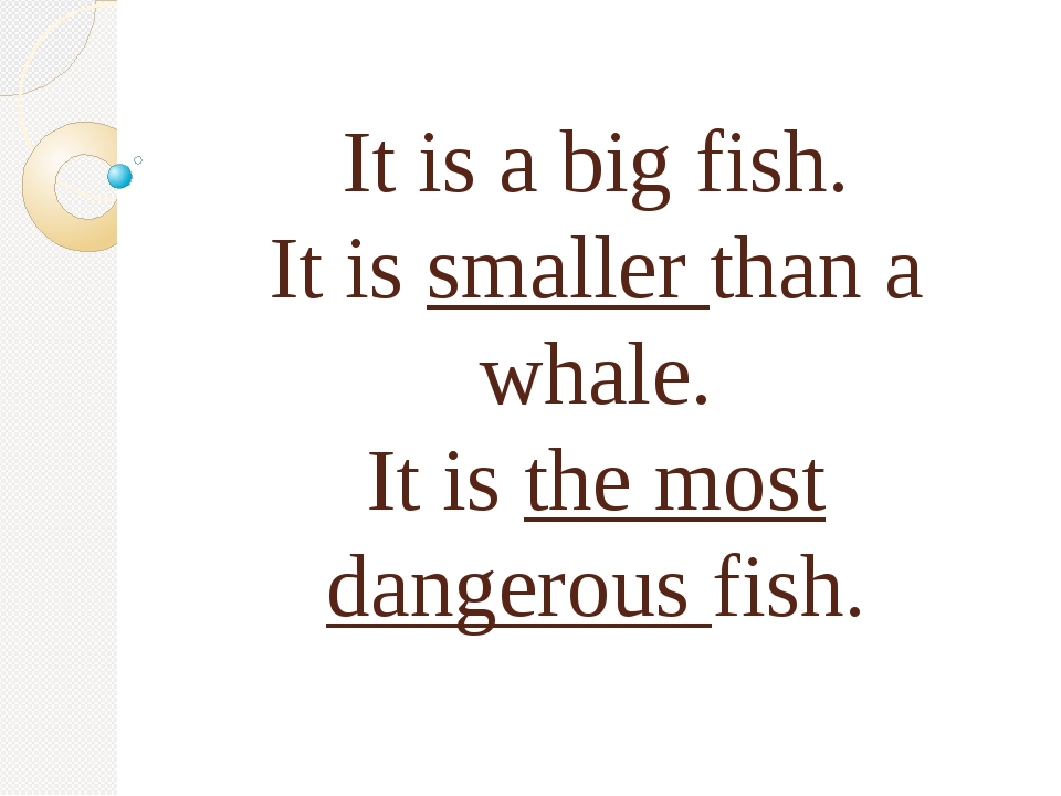 It is a big fish. It is smaller than a whale. It is the most dangerous fish.