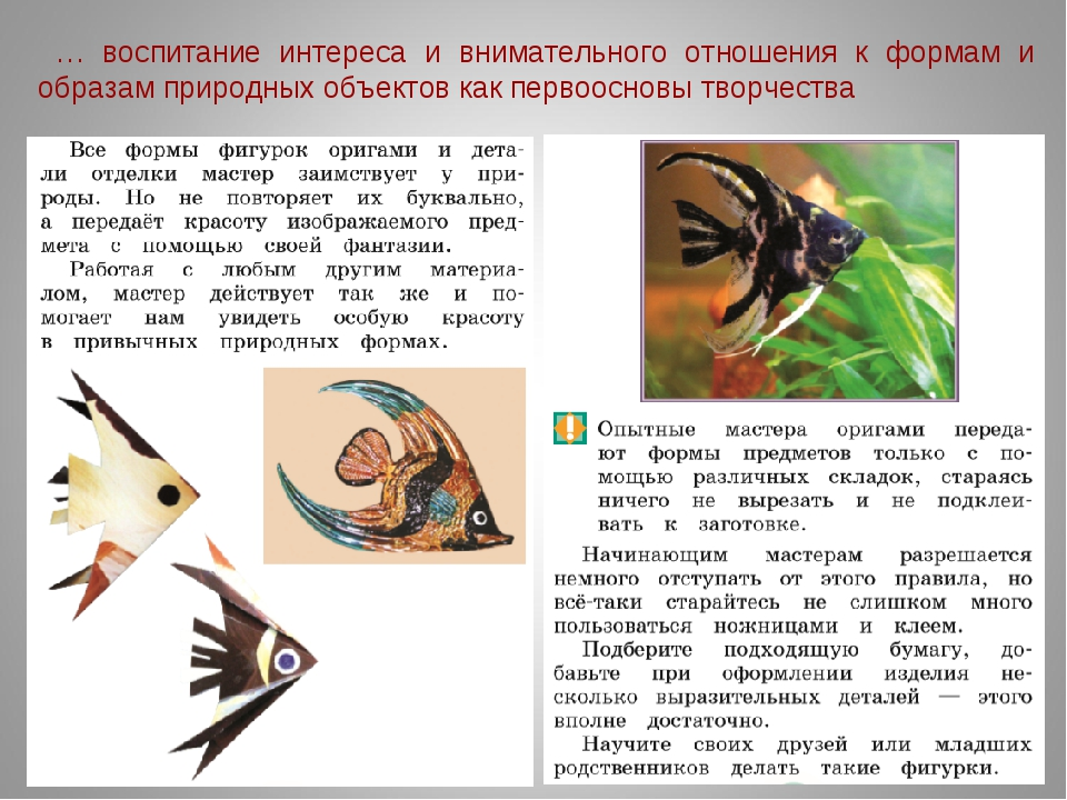 … воспитание интереса и внимательного отношения к формам и образам природных...