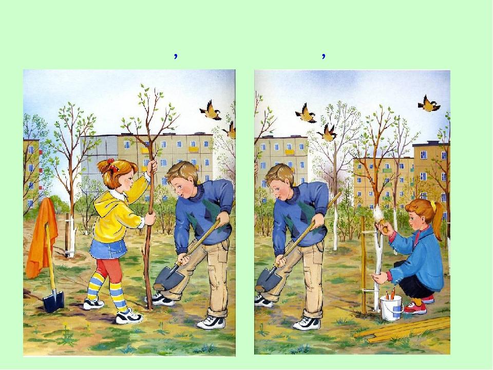 А ещё весной белят стволы деревьев, кустарников, сажают молодые деревья.