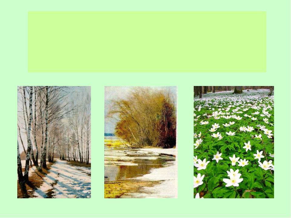 ДЕРЕВЬЯ КУСТАРНИКИ ТРАВЫ Жизнь растений весной