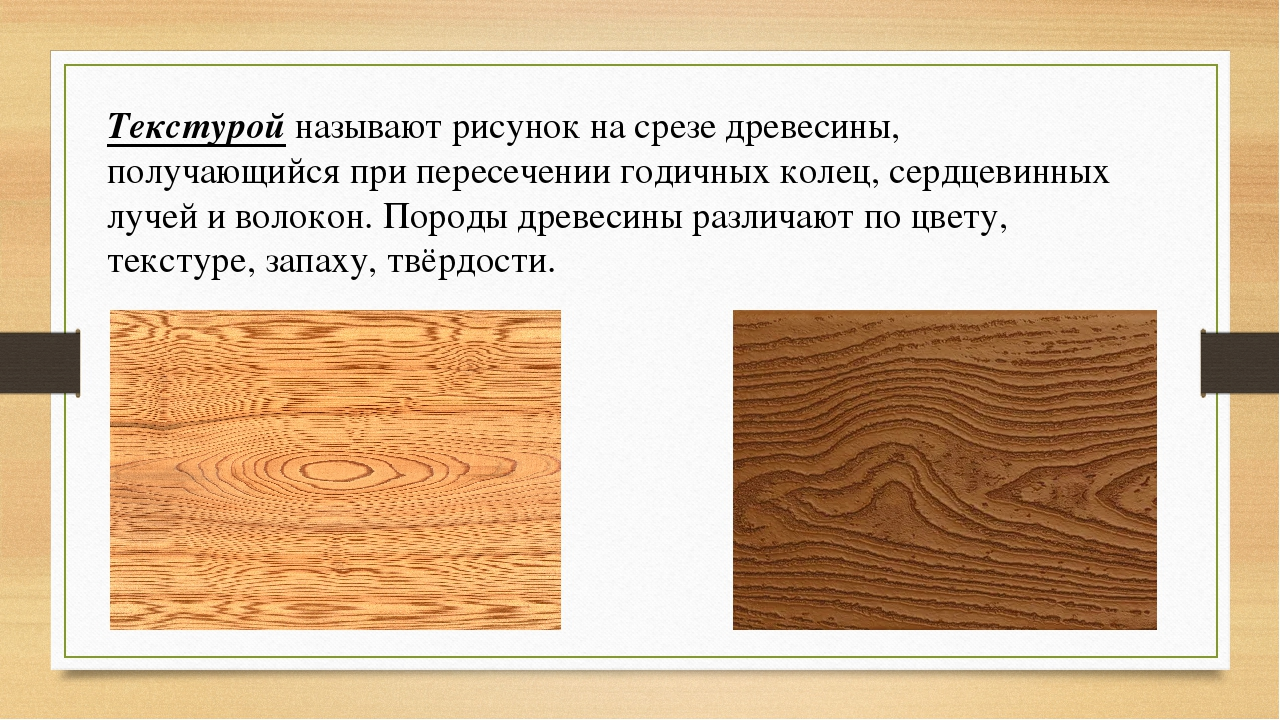 Текстурой называют рисунок на срезе древесины, получающийся при пересечении г...