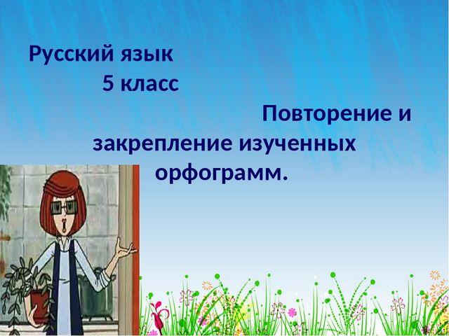 Русский язык 5 класс Повторение и закрепление изученных орфограмм.