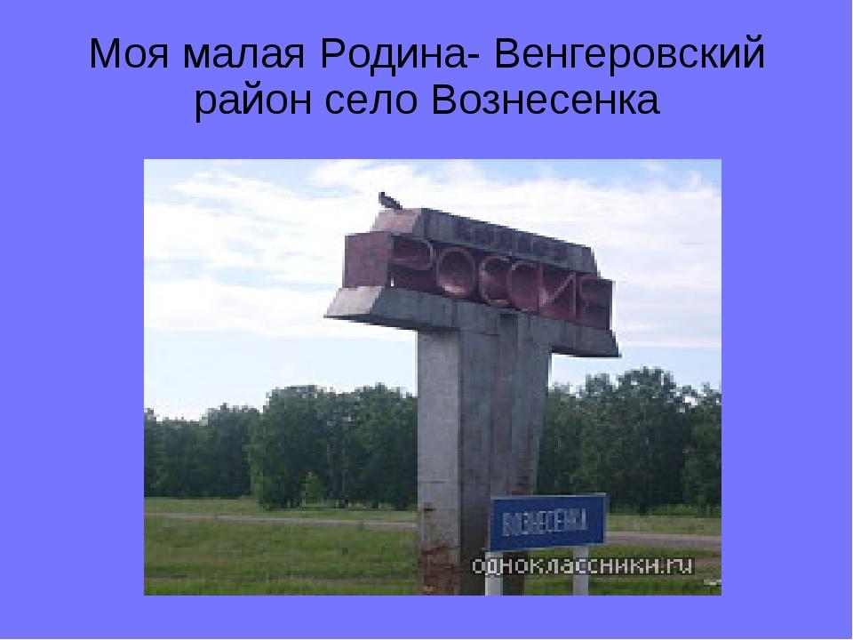 Моя малая Родина- Венгеровский район село Вознесенка