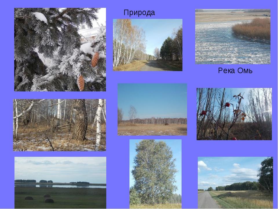 Природа Река Омь