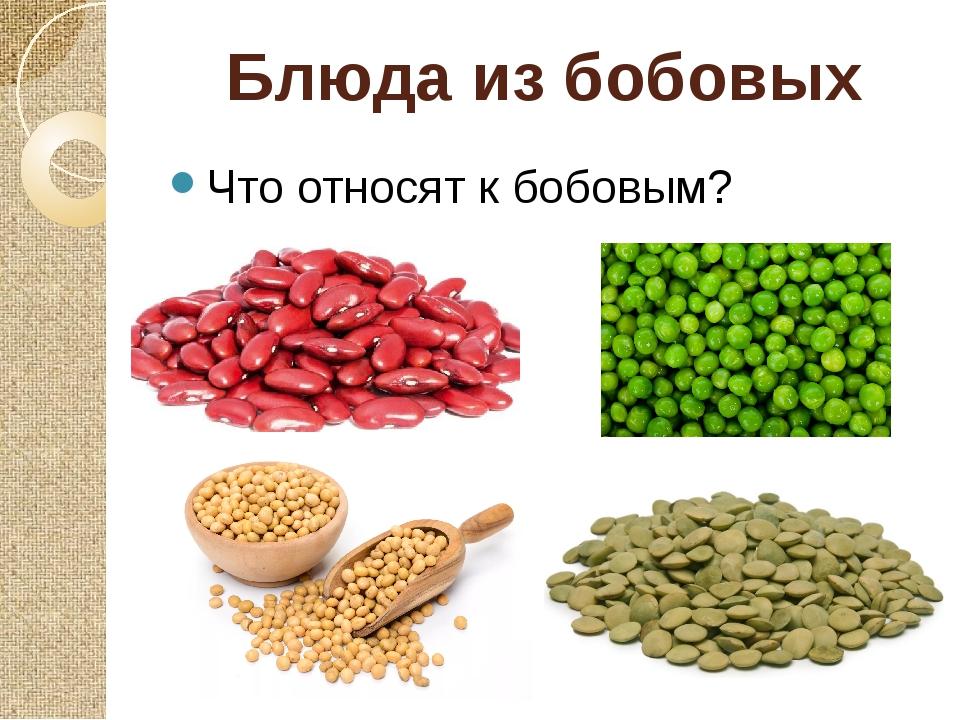 Блюда из бобовых Что относят к бобовым?