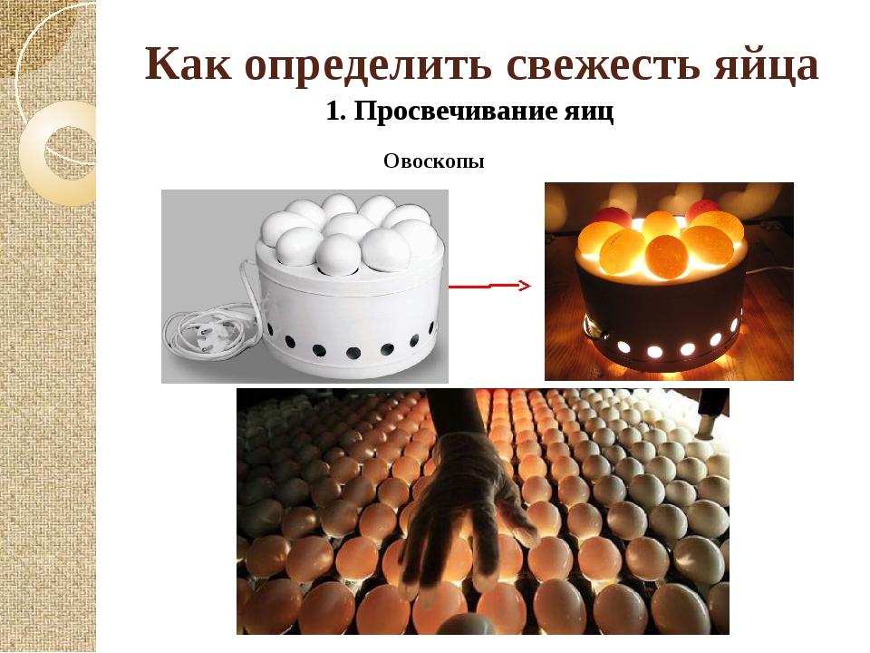 Как определить свежесть яйца 1. Просвечивание яиц Овоскопы