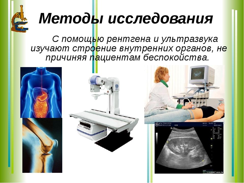Методы исследования С помощью рентгена и ультразвука изучают строение внутре...