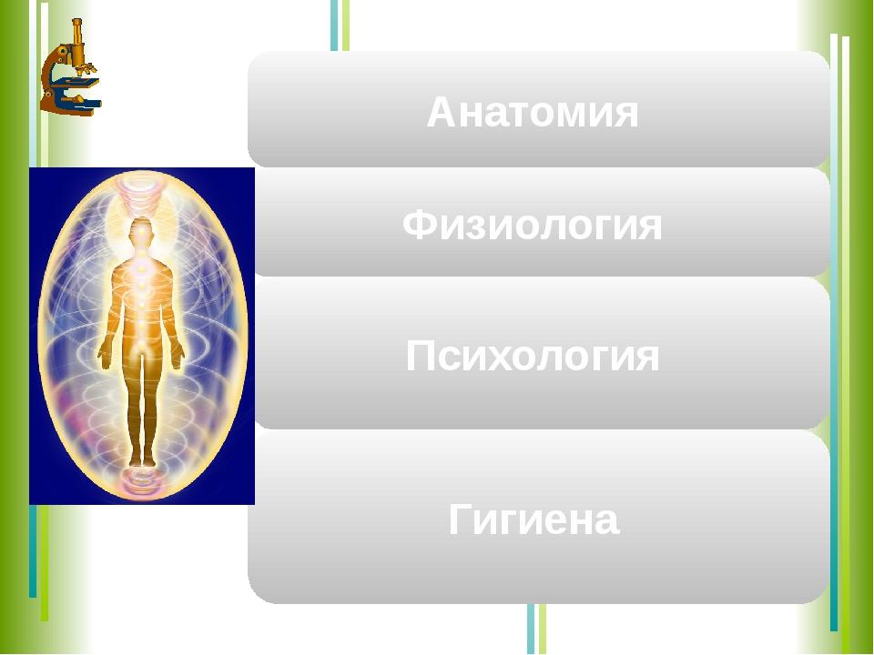 Наука, изучающая внутреннее и внешние строение человека Анатомия наука, изуча...