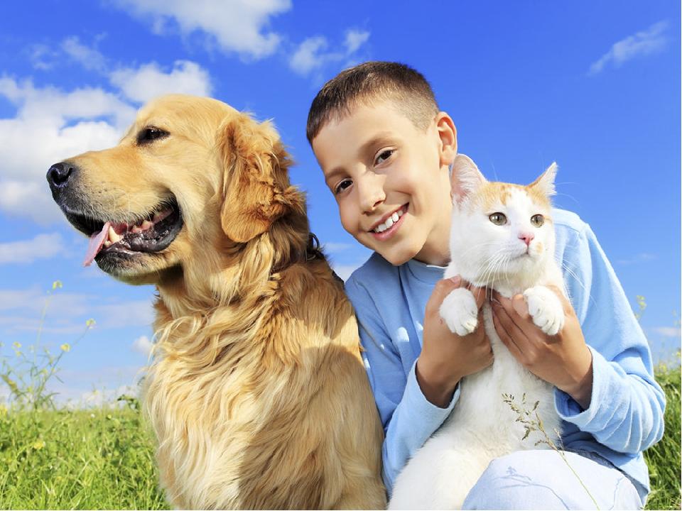 Фото дети с домашними животными