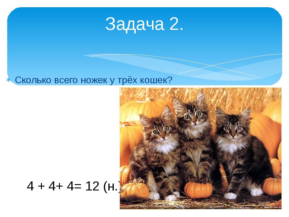 Сколько всего ножек у трёх кошек? Задача 2. 4 + 4+ 4= 12 (н.)