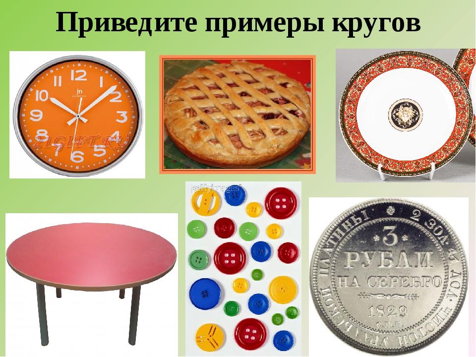 Приведите примеры кругов