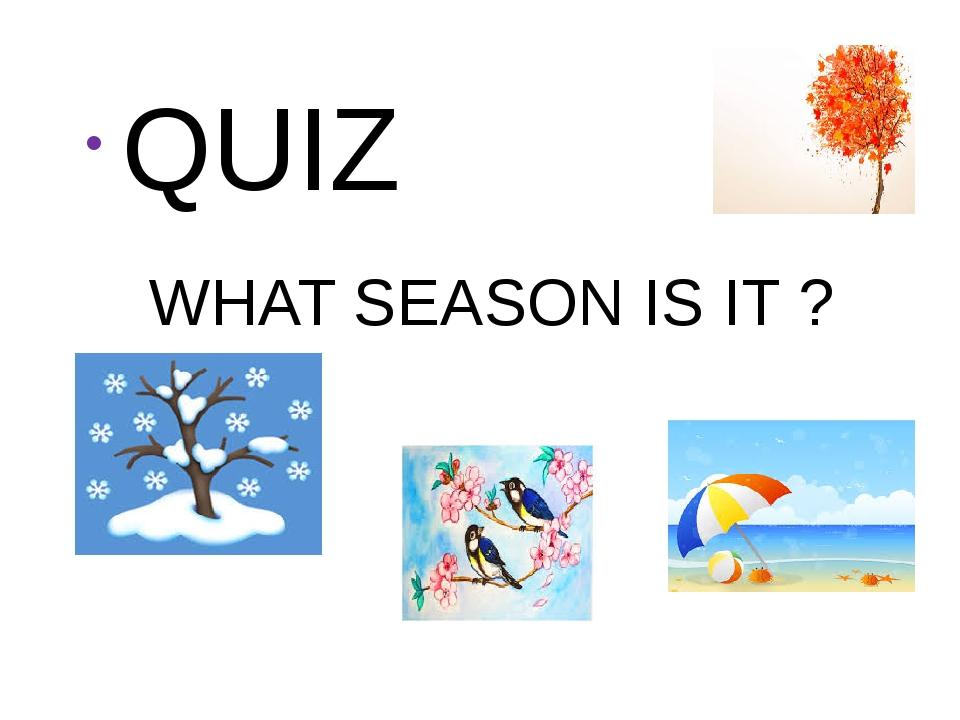 WHAT SEASON IS IT ? QUIZ