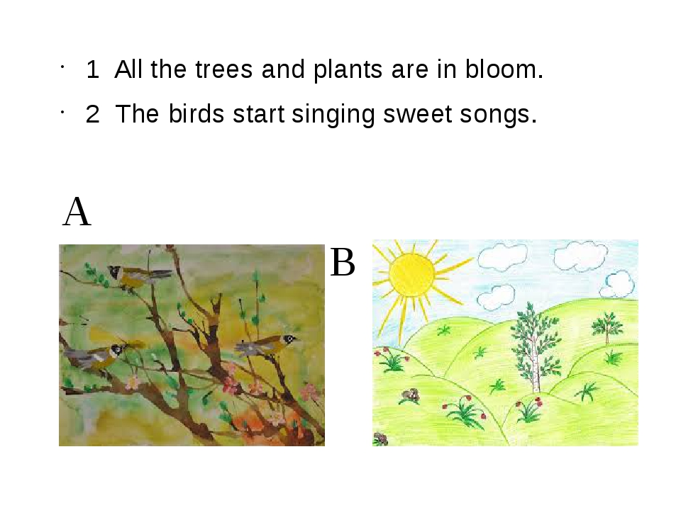 A B 1 All the trees and plants are in bloom. 2 The birds start singing sweet...