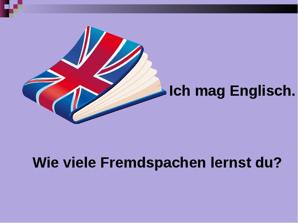 Ich mag Englisch. Wie viele Fremdspachen lernst du?