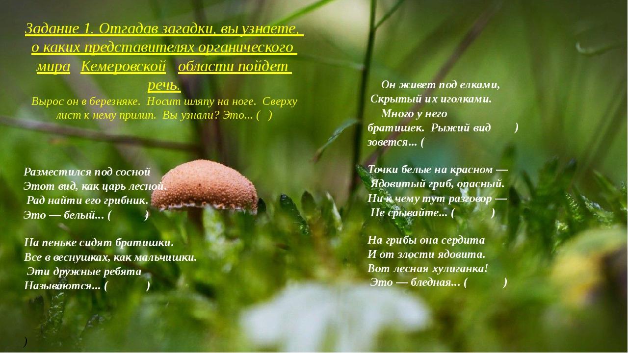 Задание 1. Отгадав загадки, вы узнаете, о каких представителях органического...