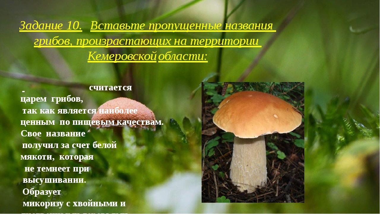 Задание 10.Вставьте пропущенные названия грибов, произрастающих на территор...