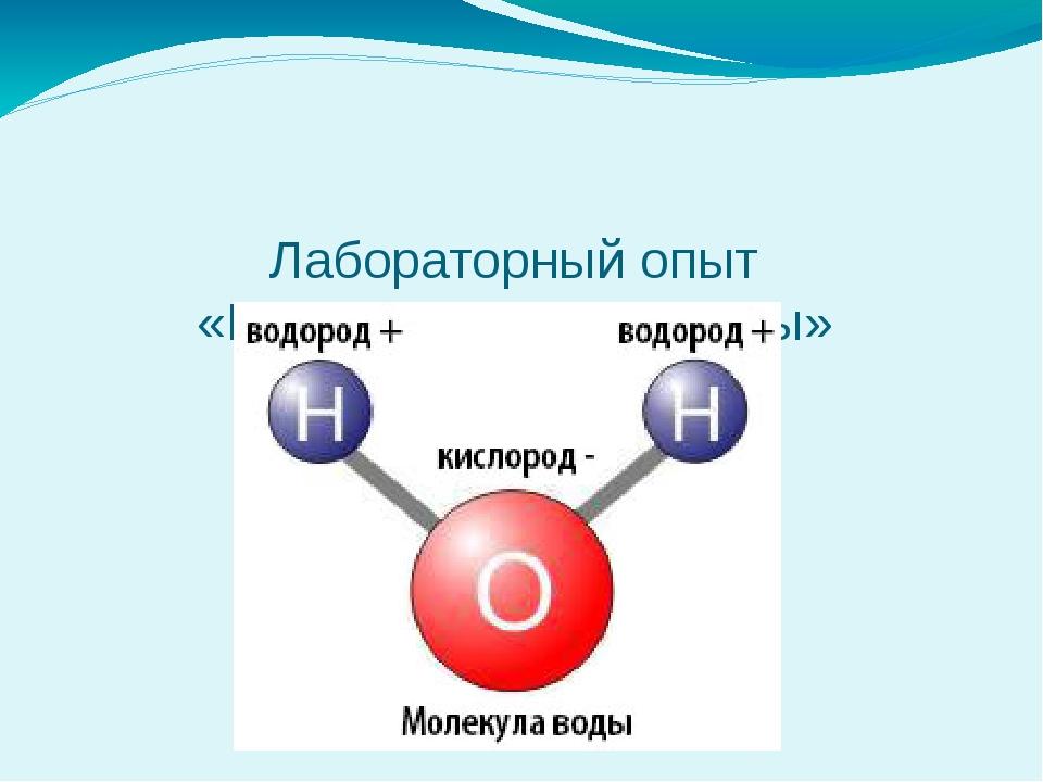 Лабораторный опыт «Модель молекулы воды»