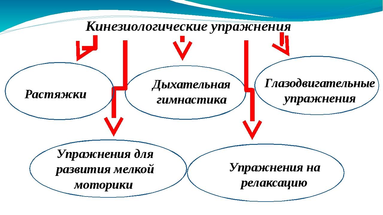 Кинезиологические упражнения Растяжки Дыхательная гимнастика Глазодвигательн...