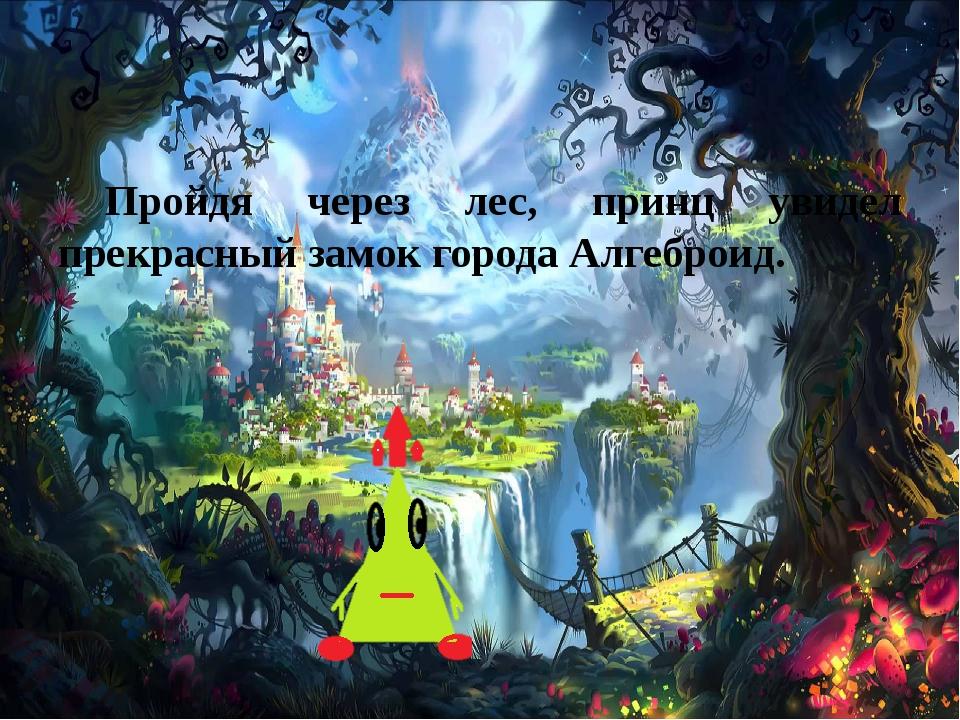 Пройдя через лес, принц увидел прекрасный замок города Алгеброид.