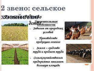 2 звено: сельское хозяйство Растениеводство Животноводство Отличительные особ
