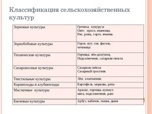Классификация сельскохозяйственных культур Зерновые культуры Гречиха, кукуруз