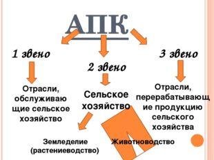 АПК 1 звено 2 звено 3 звено Отрасли, обслуживаю щие сельское хозяйство Сельск
