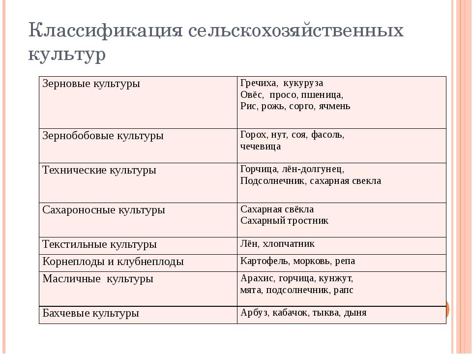 Классификация сельскохозяйственных культур Зерновые культуры Гречиха, кукуруз...