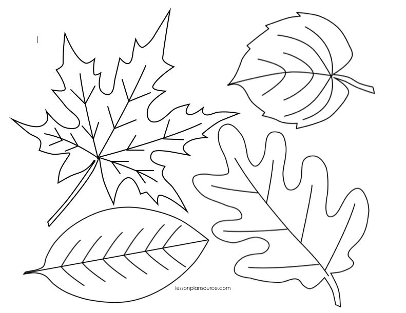 Осенние листья картинки для детей шаблоны распечатать