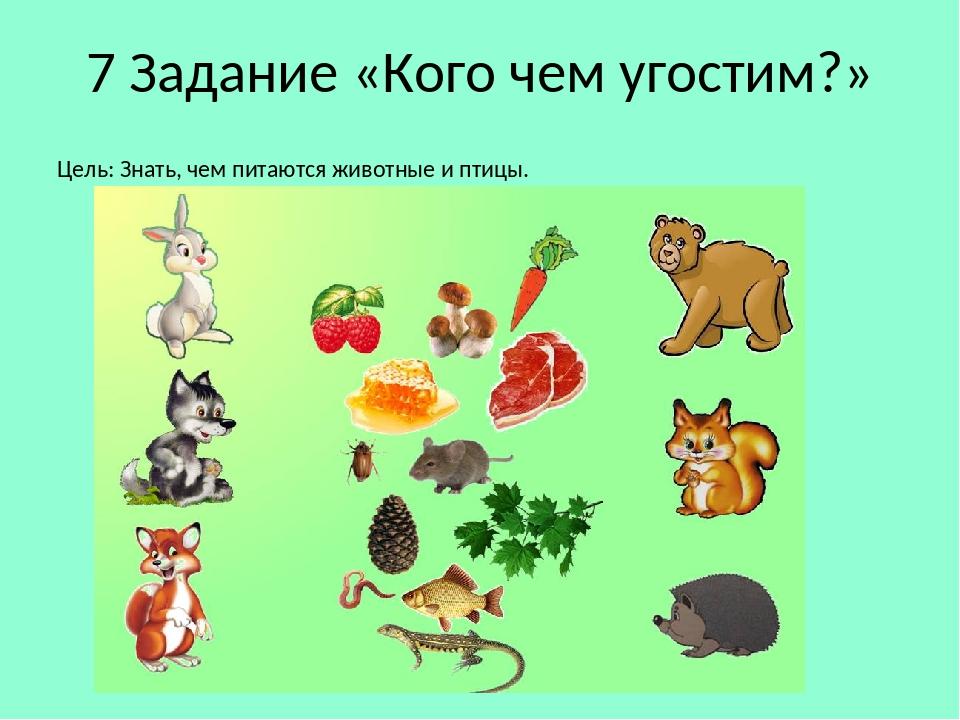 нас картинки какое дикое животное что ест обладает своей особой