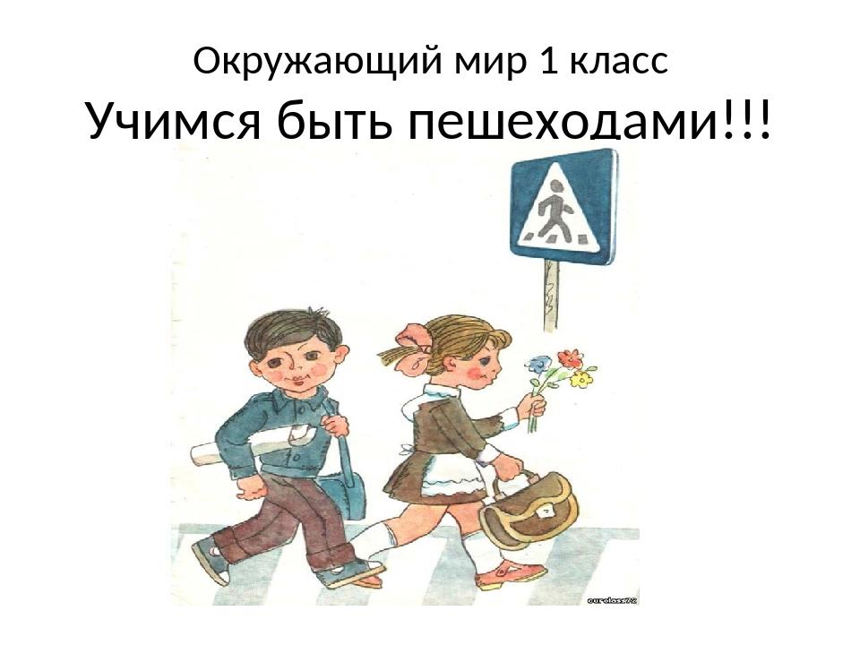 Окружающий мир 1 класс Учимся быть пешеходами!!!