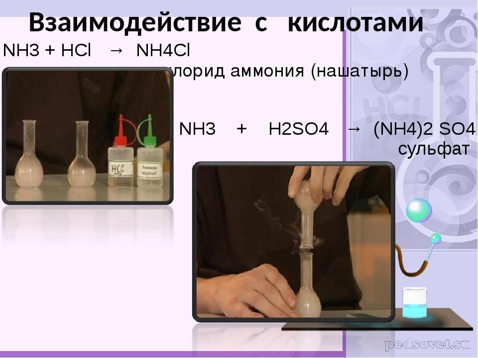 NH3 + HCl → NH4Cl хлорид аммония (нашатырь) 2 NH3 + H2SO4 → (NH4)2 SO4 сульфа...