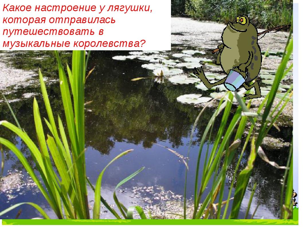 Какое настроение у лягушки, которая отправилась путешествовать в музыкальные...