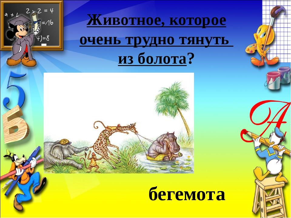 Животное, которое очень трудно тянуть из болота? бегемота