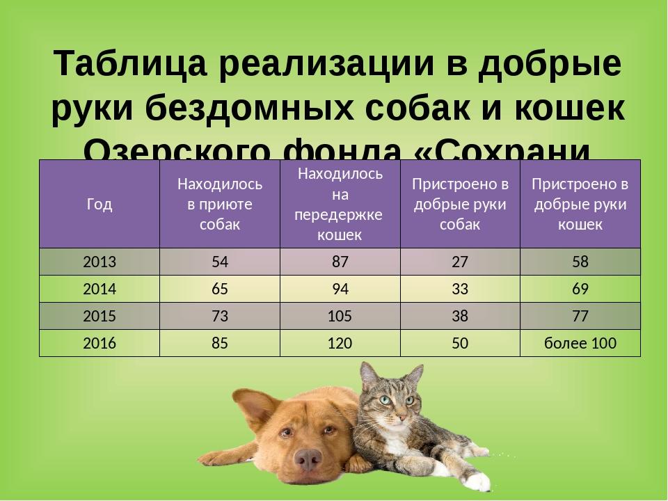 Таблица реализации в добрые руки бездомных собак и кошек Озерского фонда «Сох...