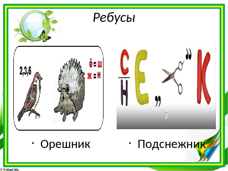 Ребусы Орешник Подснежник © FokinaLidia